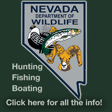 Nevada Depoartment of Wildlife